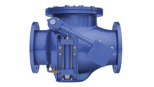 Check Valves manufacturers in Salem, India