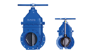 Resilent Gate Valves manufacturers